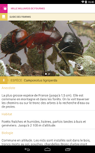 Mille milliards de fourmis Capture d'écran
