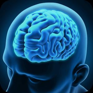 Cérébrum – Entrainement cérébral