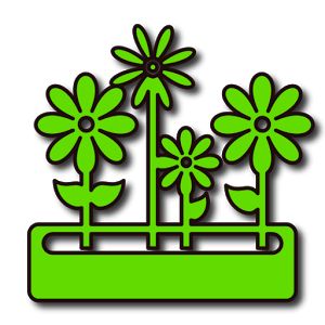 SeedNShare – Potager et jardin