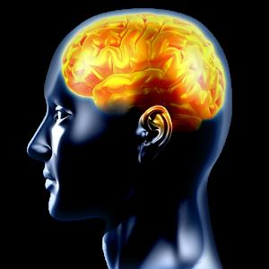 Entraînement Cérébral