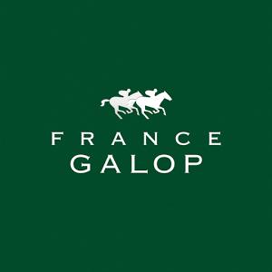 Cette application officielle vous permettra de retrouver toutes les données techniques professionnelles de France Galop (Palmarès, Recherche, Calendrier, etc.).