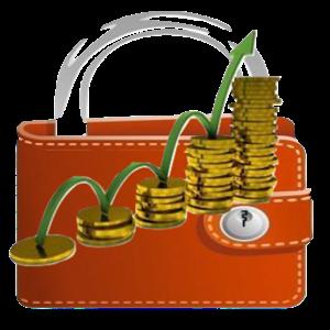 My Budget Book est un outil de gestion, très simple d'utilisation, qui vous permettra d'avoir une vue complète sur vos entrées et sorties d'argent.