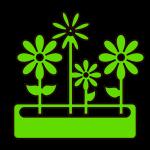 SeedNShare - potager et jardin
