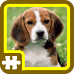 Jigsaw – Puzzles d'animaux
