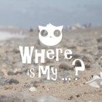 0000 Wim – Application communautaire géolocalisée d'objets trouvés