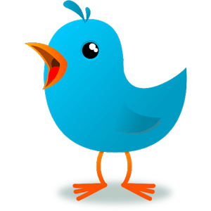 Twigle Birds – Le Shazam des oiseaux