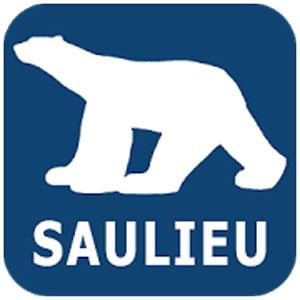Saulieu