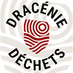 Dracénie Déchets
