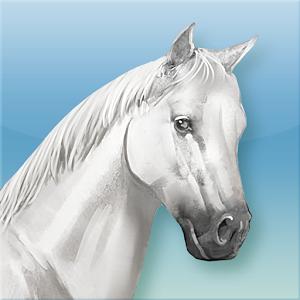 Élevez vos chevaux et dirigez votre propre centre équestre !