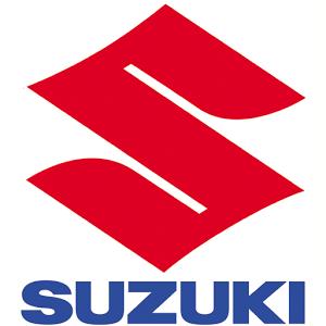 La Spa Elsecom automobiles est le distributeur officiel de la marque SUZUKI en Algérie, La société compte actuellement 186 personnes à son emploi.